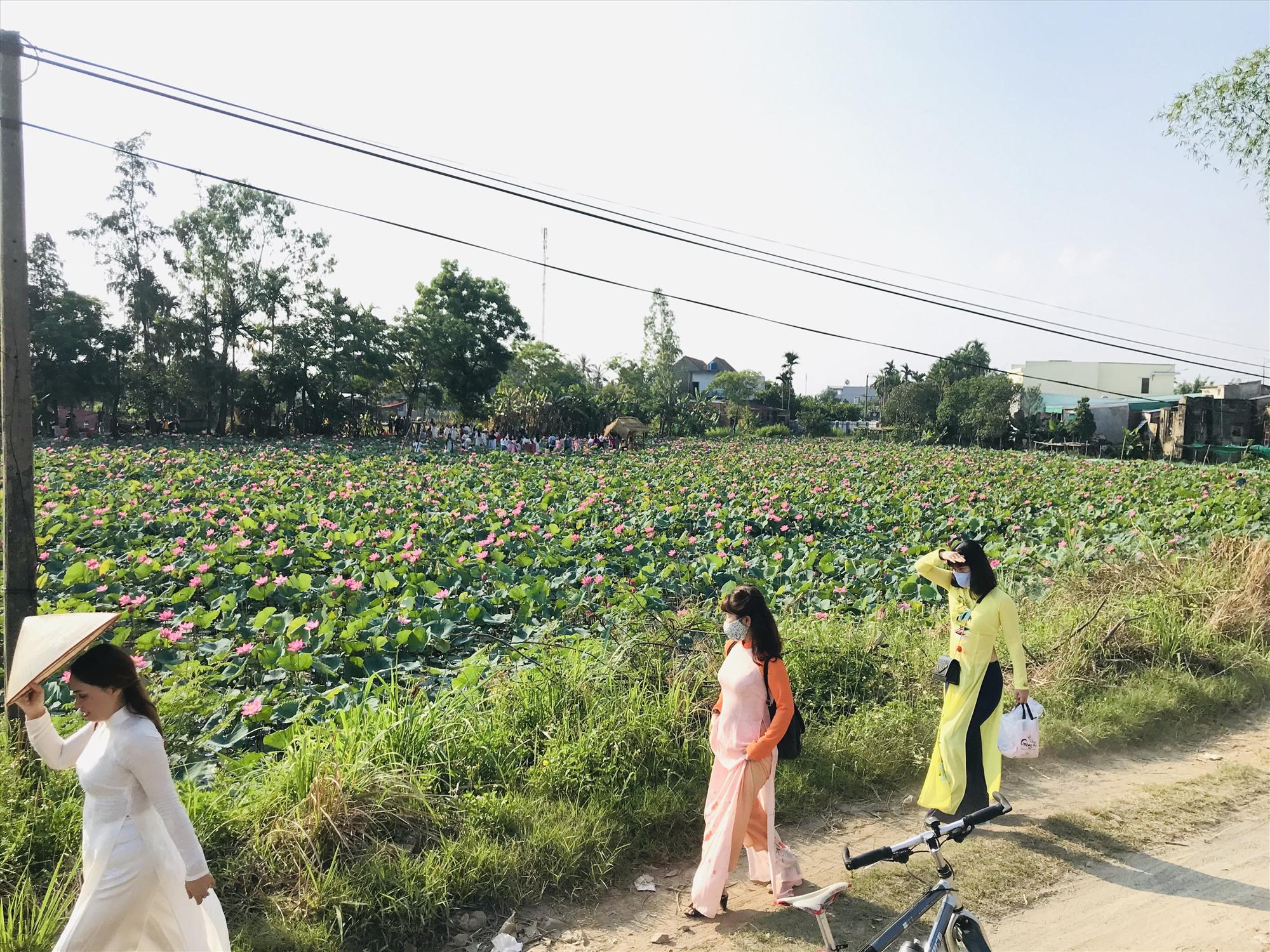 4 điểm check-in ở Quảng Nam lên ảnh siêu ảo, màu mè như phim điện ảnh 2