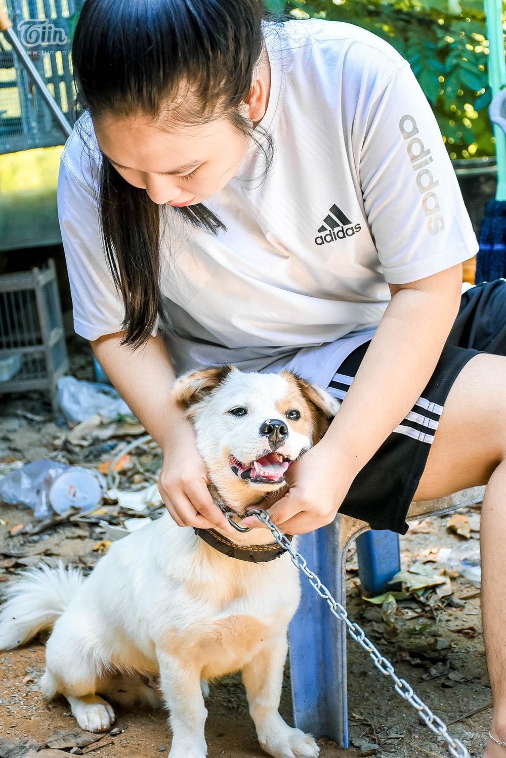 Chùm ảnh: Cuộc sống của những chú chó bị bỏ rơi nơi 'mái ấm' cách xa khu dân cư ở Đà Nẵng 16
