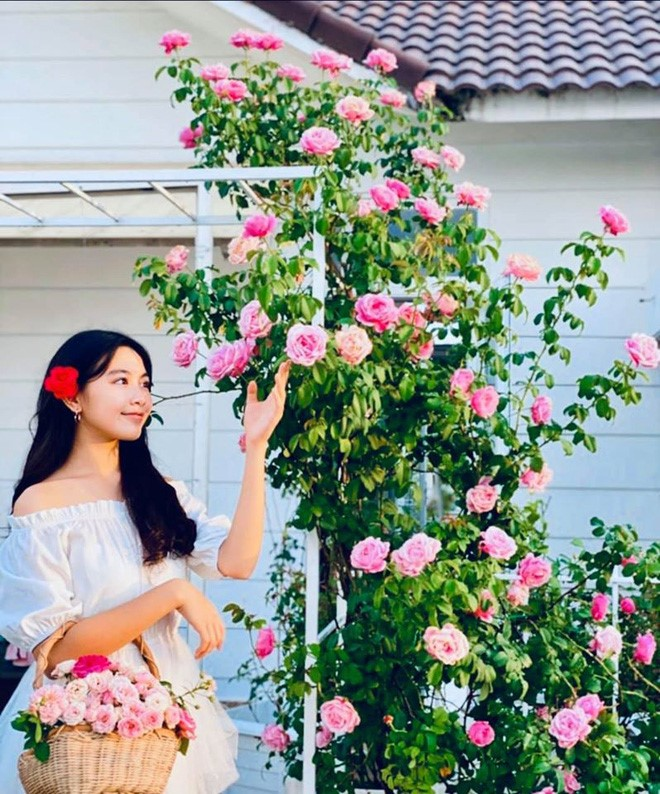 Bà xã Quyền Linh khoe thành quả thu hoạch hoa trái sai trĩu trong căn biệt thự 21 tỷ, được cả chồng lẫn 2 cô con gái xinh đẹp phụ giúp 10