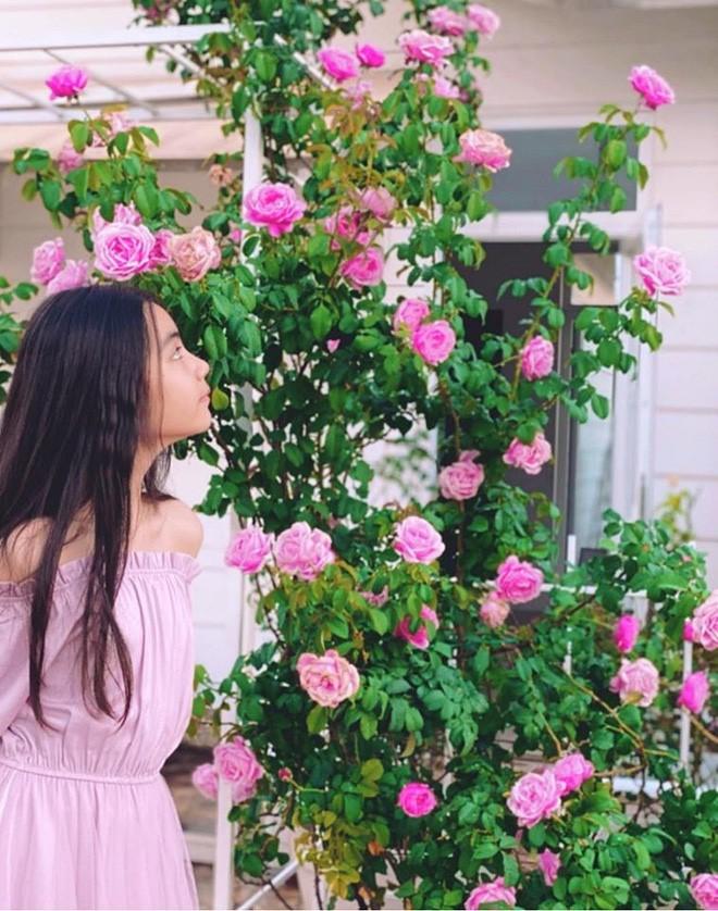 Bà xã Quyền Linh khoe thành quả thu hoạch hoa trái sai trĩu trong căn biệt thự 21 tỷ, được cả chồng lẫn 2 cô con gái xinh đẹp phụ giúp 12
