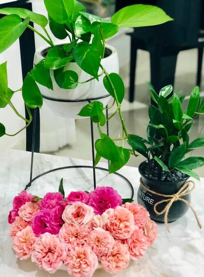 Bà xã Quyền Linh khoe thành quả thu hoạch hoa trái sai trĩu trong căn biệt thự 21 tỷ, được cả chồng lẫn 2 cô con gái xinh đẹp phụ giúp 20