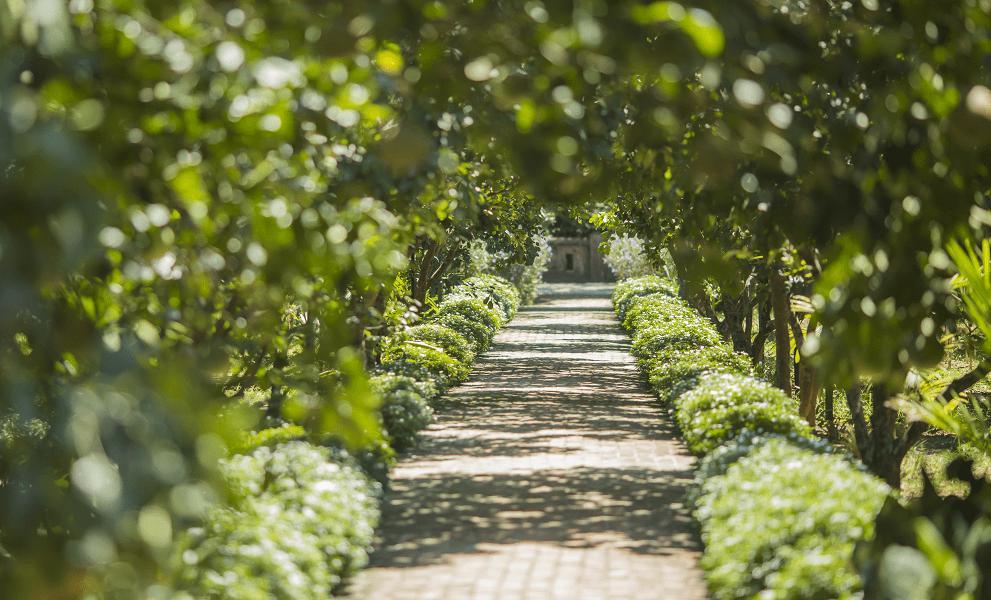 Pilgrimage Village và Hue Ecolodge với không gian xanh mát.