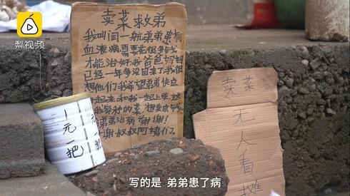 Yihang viết lên tấm bìa cứng 'Bán rau cứu em' để kêu gọi mọi người mua rau.
