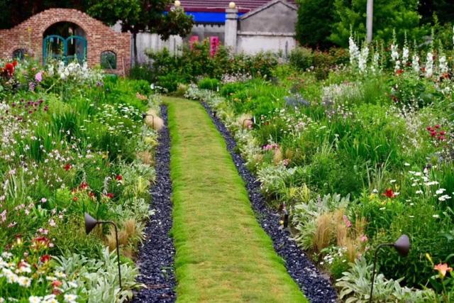 Cặp vợ chồng trẻ dành 5 năm để biến khu đất hoang rộng 6000m² thành khu vườn thiên đường của cỏ cây, hoa lá 3