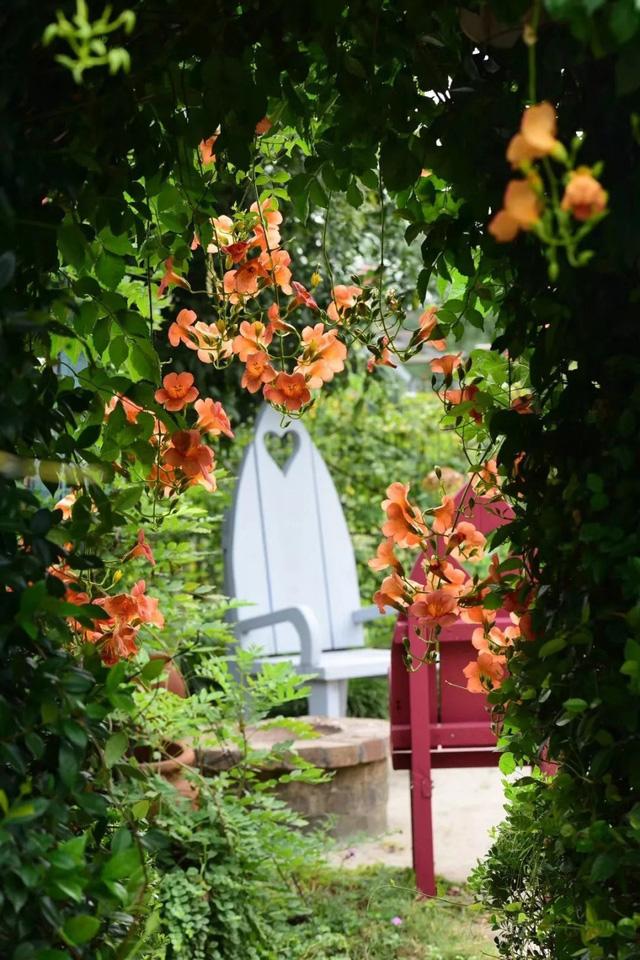 Vườn được trồng hoa theo mùa, cây ăn quả và rau sạch.