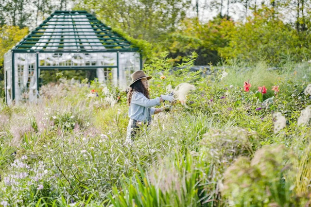 Cặp vợ chồng trẻ dành 5 năm để biến khu đất hoang rộng 6000m² thành khu vườn thiên đường của cỏ cây, hoa lá 22