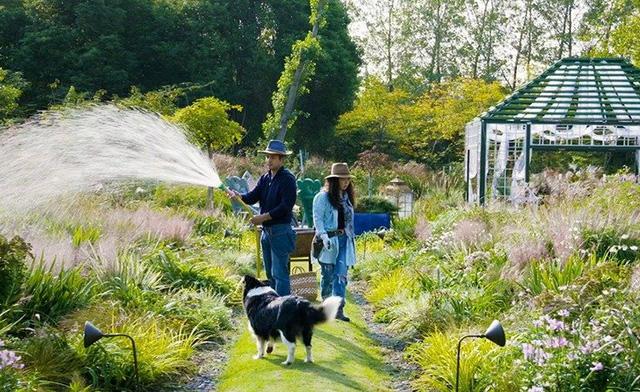 Cặp vợ chồng trẻ dành 5 năm để biến khu đất hoang rộng 6000m² thành khu vườn thiên đường của cỏ cây, hoa lá 29