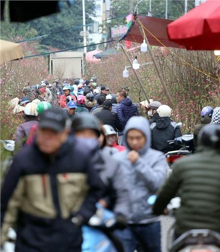 Chợ hoa Quảng An lúc 10h sáng ngày 25 Âm lịch, hàng nghìn người từ khắp nơi kéo đến mua đào, quất cũng như các loại hoa tươi.