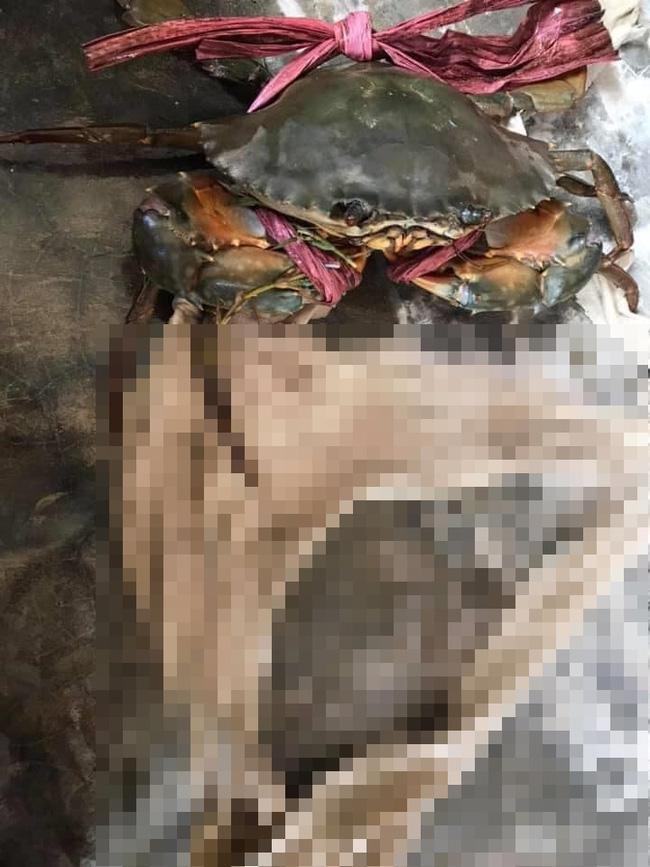 Tốn không ít tiền mua cua biển, anh chàng lại 'cạch không ăn' khi mục sở thị chiếc dây buộc kinh dị 1