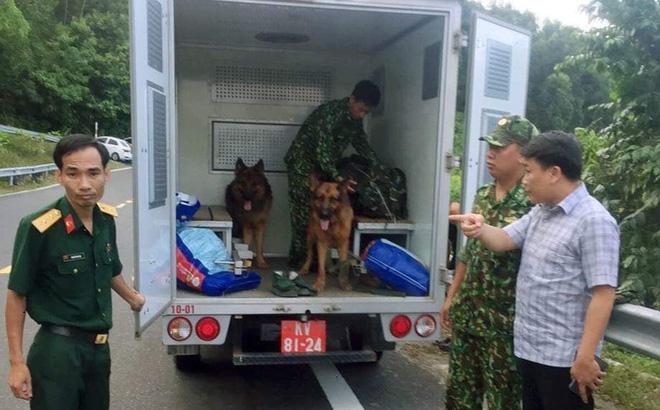 Công an Đà Nẵng đã đưa chó nghiệp vụ vào cuộc truy dấu vết phạm nhân Triệu Quân Sự.
