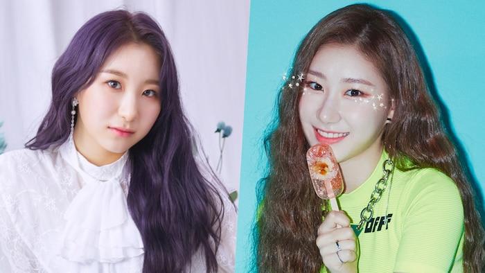 Mặc dù tài năng nhưng Chaeyeon và Chaeryeong thường xuyên phải nhận những chỉ trích về ngoại hình của một bộ phận cư dân mạng.