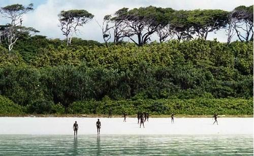 Người Sentinel tự do sinh sống, săn bắn và biến hòn đảo thành thiên đường của riêng họ.