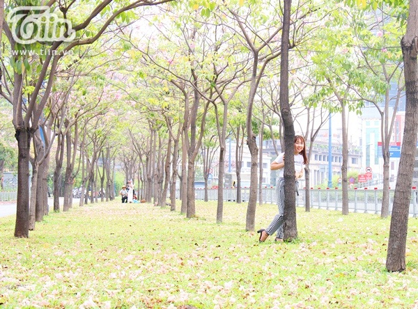 Sài Gòn tháng 4 rực rỡ với mùa hoa loa kèn 20