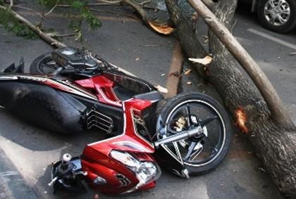 Chiếc xe máy của thầy giáo bị cây đè