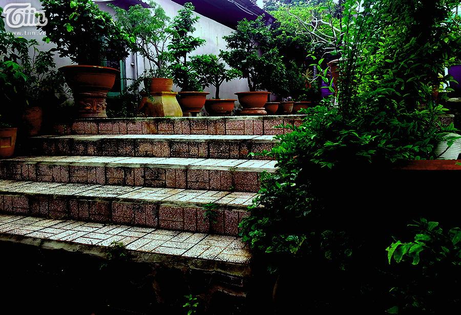 Những bậc cầu thang cũ rêu phong.