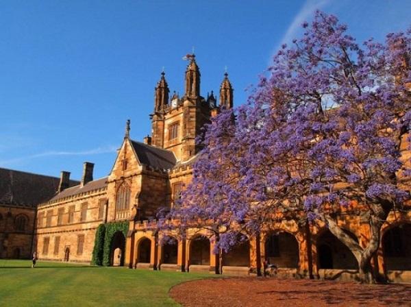 Không chỉ là ngôi trường có kiến trúc độc đáo nhất nước Úc, trường đại học Sydney còn là nơi học tập của 6 Thủ tướng của đất nước này.