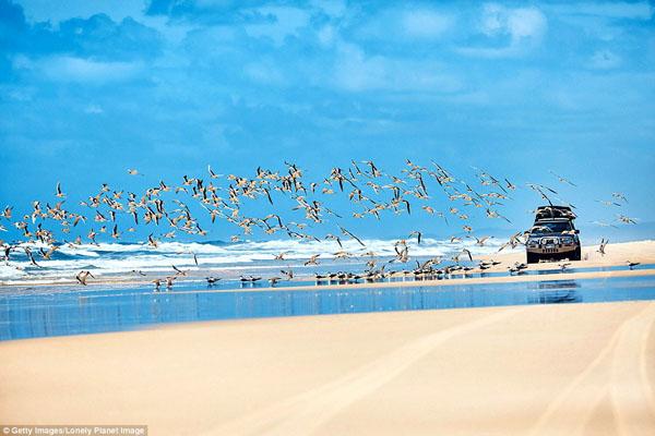 Đường bờ biển Great là một trong những đường lái xe bãi biển dài nhất thế giới. (Ảnh: Daily Mail)