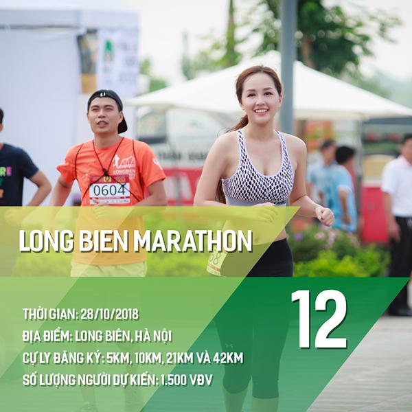 16 giải chạy bộ năm 2018 các Runners nhất định phải một lần ghi danh 11