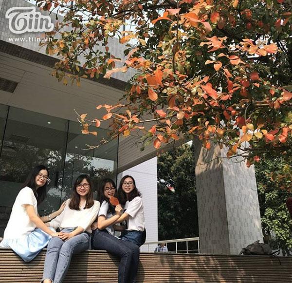 Đây là nơi chụp ảnh của nhiều nhóm bạn FTU. Ảnh: uhang97.
