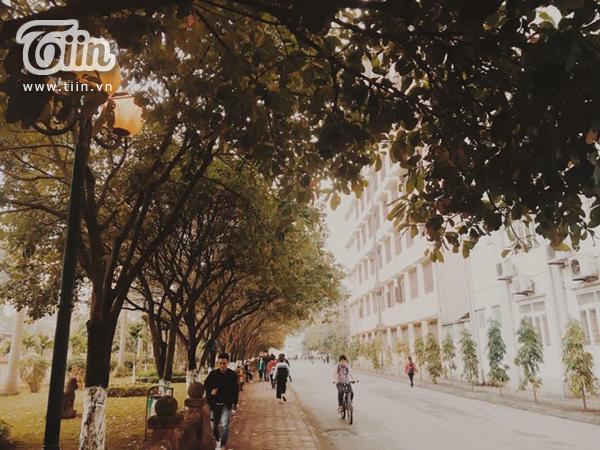 Đây là nơi thường xuyên được sinh viên Sư phạm chọn để đi bộ dạo mát
