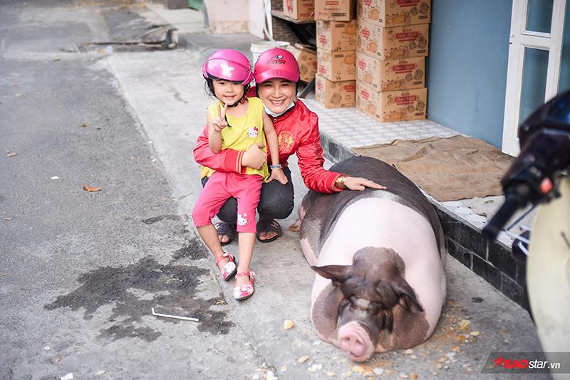 Nhiều đứa trẻ trong xóm cũng vô cùng thích thú, khi nào cô heo ra khỏi nhà là chúng lại chạy tới để chơi chung.