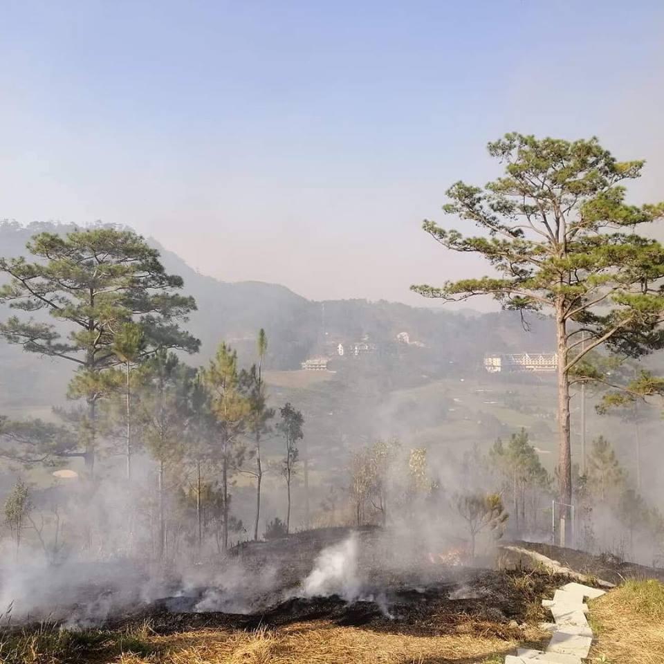 Homestay '1001 góc sống ảo' ở Đà Lạt bất ngờ cháy lớn khiến nhiều tín đồ du lịch xót xa 0