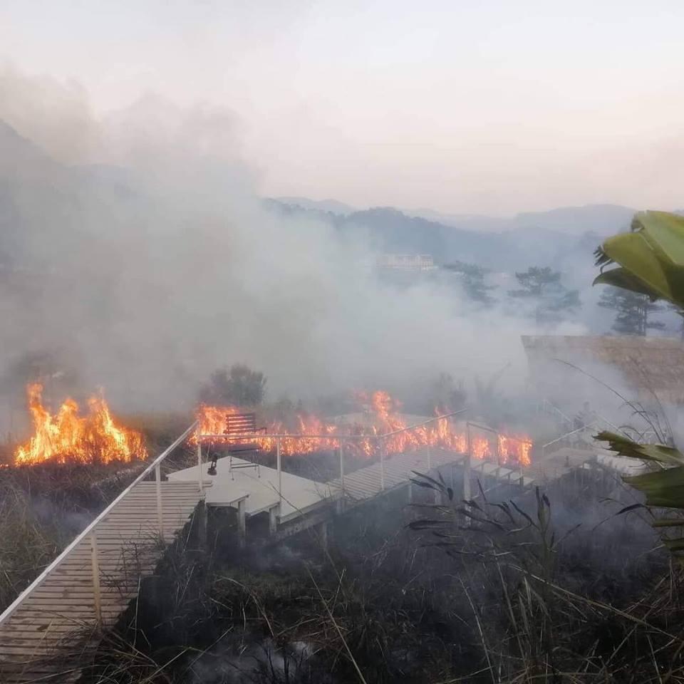 Homestay '1001 góc sống ảo' ở Đà Lạt bất ngờ cháy lớn khiến nhiều tín đồ du lịch xót xa 1