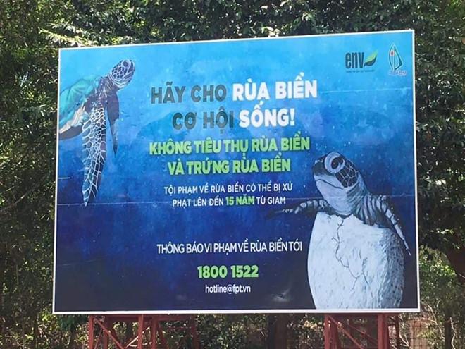 Tại Côn Đảo có rất nhiều bảng thông báo, tuyên truyền về cấm mua bán rùa biển