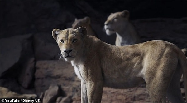 'Lion King' tung trailer chính thức, hứa hẹn siêu phẩm của mùa hè 2019 0
