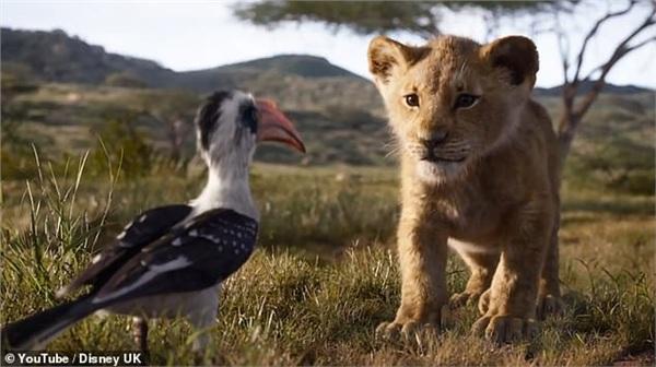 'Lion King' tung trailer chính thức, hứa hẹn siêu phẩm của mùa hè 2019 7