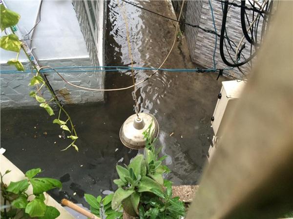 Một người dân chia sẻ lối vào nhà ngập úng sau cơn mưa nặng hạt. Ảnh: Lão Nhị.
