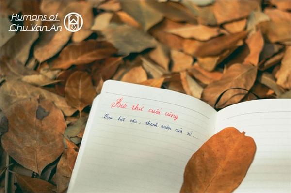 Năm học vừa kết thúc, bồi hồi đọc những câu chuyện rất tình của học sinh trường Chu Văn An 1