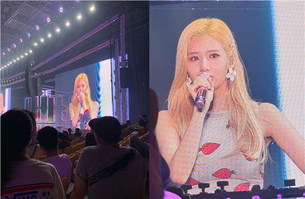Sana (TWICE) xin lỗi, cúi đầu trước fan ngay tại concert trong nước mắt, nguyên nhân vì đâu? 2