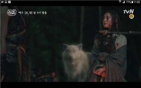 Con sói trắng xuất hiện sau khi Tan Ya nguyền rủa làm cho bọn lính run sợ