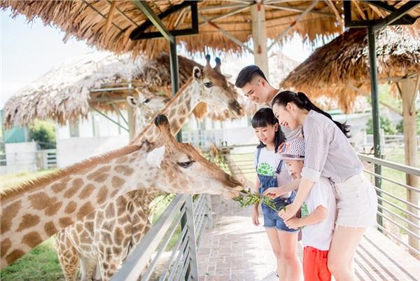 Đang trong dịp nghỉ hè, vườn thú hiện là lựa chọndu lịch, dã ngoại hàng đầu của nhiều gia đình có con nhỏ