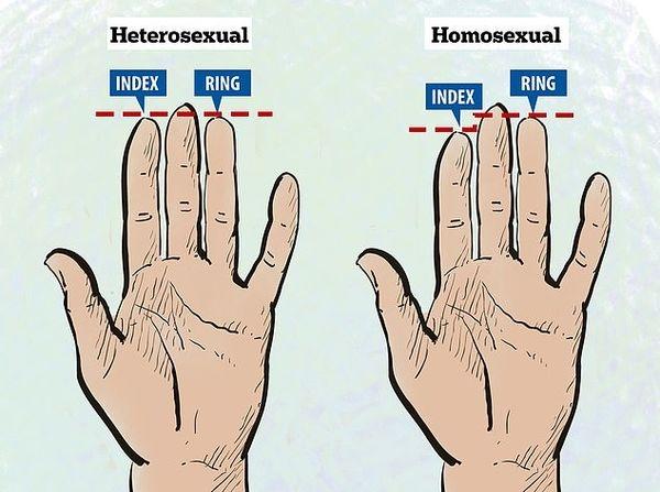 Người đàn ông có ngón áp út dài hơn ngón trỏ thì có xu hướng lăng nhăng nhiều hơn.