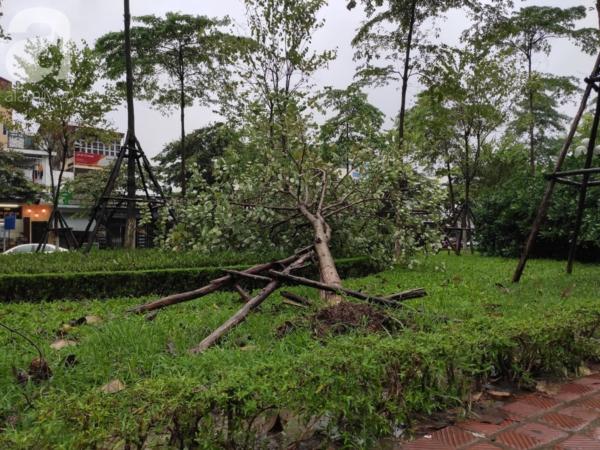 Ảnh: Người dân Hà Nội oằn mình trong mưa lớn và gió lốc mạnh, bão số 3 đã suy yếu thành áp thấp nhiệt đới 10