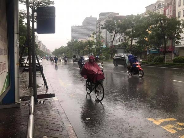 Hú hồn hình ảnh người đi đường thoát chết trong gang tấc vì cây đổ do mưa bão ở Hà Nội 2