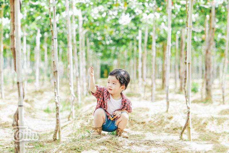 'Lịm tim' với bộ ảnh gia đình nhỏ trên 'thảo nguyên xanh' đáng yêu hết nấc 4