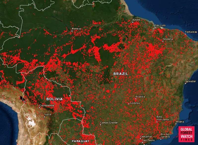 Bản đồ ghi lại những điểm xảy ra cháy rừng tại Brazil trong năm 2019 (ảnh: Global Forest Wacht Fires)