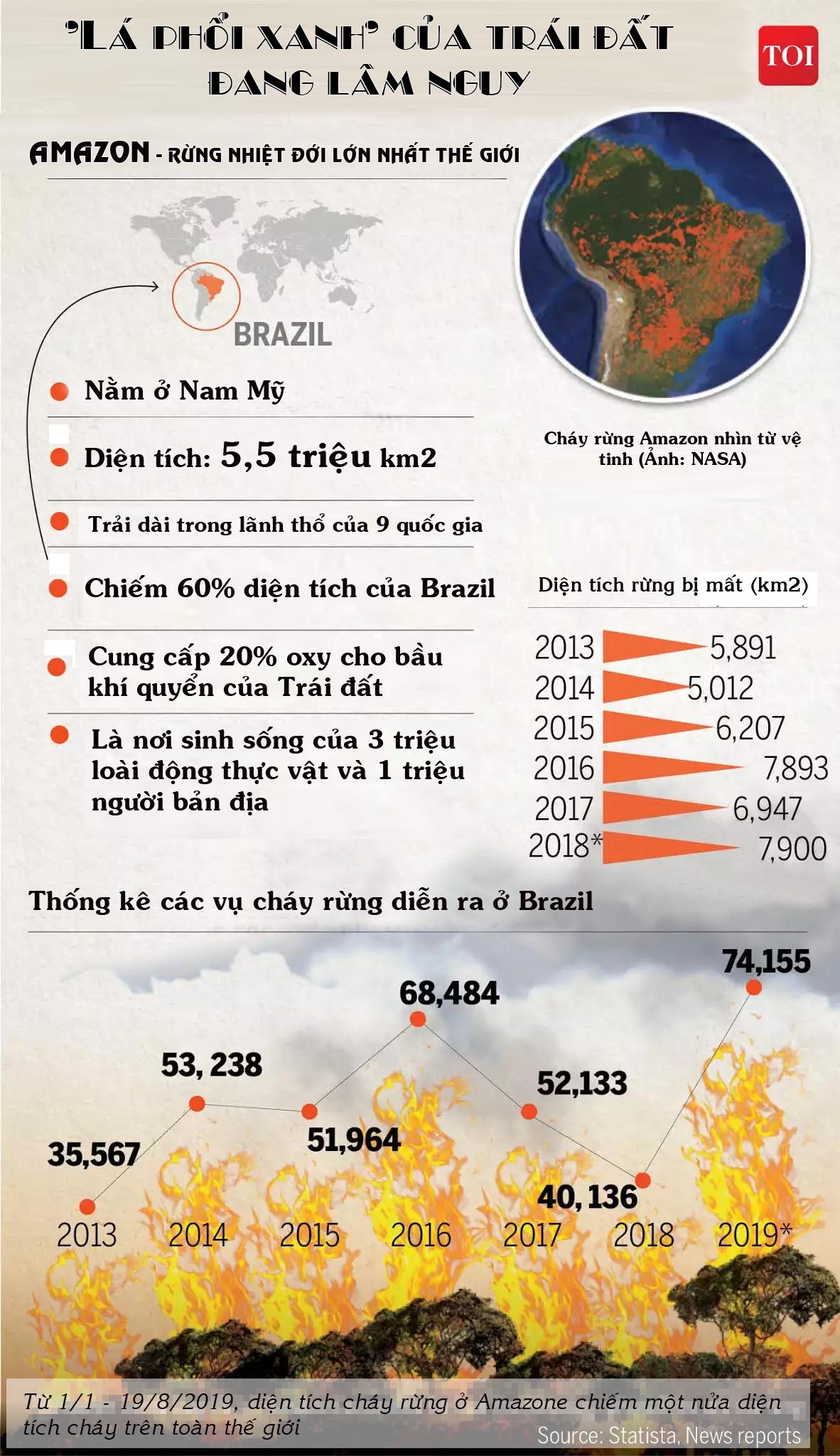 Cháy rừng Amazon: Cuộc sống như tận thế với nhiều loài 0