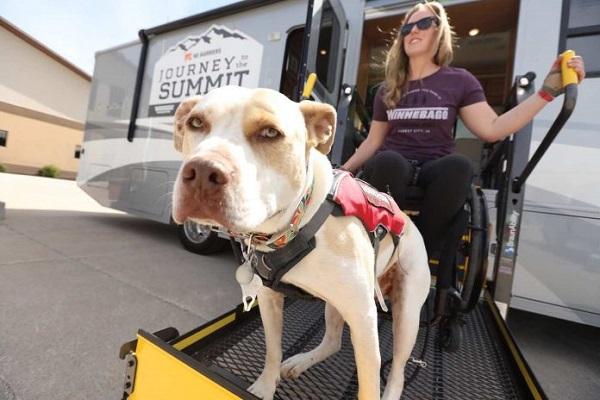 Trên chiếc xe lăn, cô gái khuyết tật chinh phục đỉnh núi cao hơn 4.000m 3