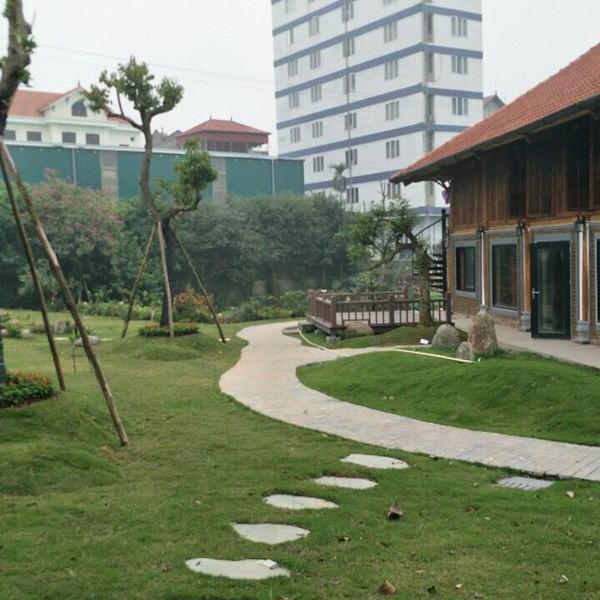 Bao quanh căn nhà là những lối đi lát đá, được phủ xanh bằng những thảm cỏ non với cây cối xanh tốt quanh năm.