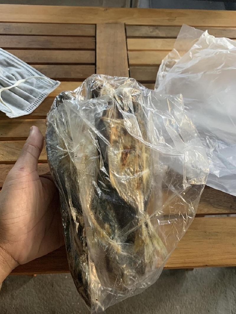 Túi cá nướng mà mẹ của 'con sen' gửi cho chú mèo