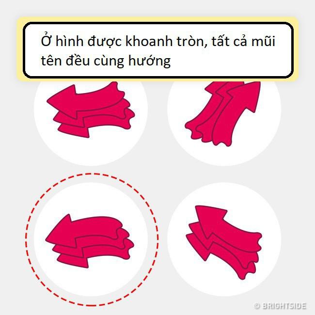 11 câu đố không dành cho người kém thông minh, bạn có muốn thử tài không? 11