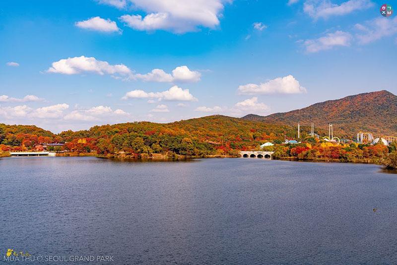 Seoul Grand Park đẹp không thể rời chân khi nhìn từ một góc trên cao (Ảnh: Hà Tuấn)