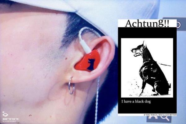 Chiếc tai nghe gây xôn xao trong cộng đồng fan.