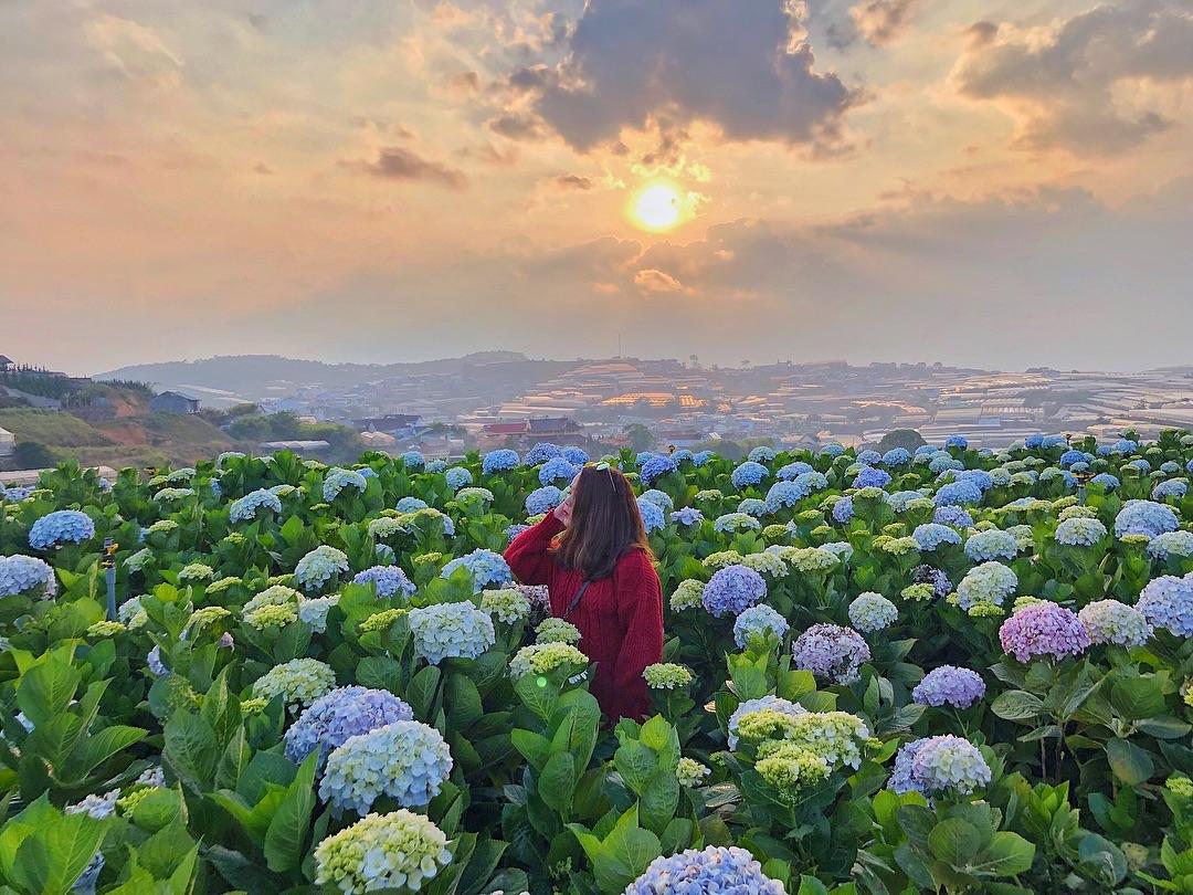 Top 10 địa điểm du lịch được tìm kiếm nhiều nhất tại Việt Nam năm 2019 1