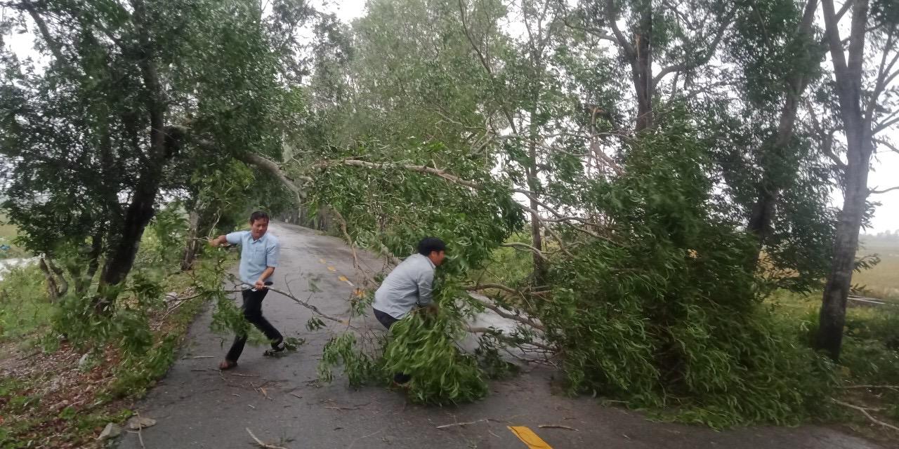 Các lực lượng khẩn trương thu dọn cây bị gãy, đổ dọc đường. Ảnh: Báo Quảng Trị.