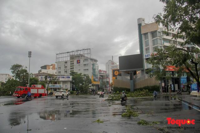 Nhiều người dân điều khiển xe máy đi trên đường đã bị gió mạnh quật ngã. Trên một số tuyến đường của TP Huế, nhiều cây xanh bị bật gốc.